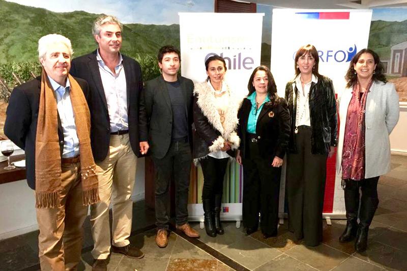 Valle de Colchagua será sede de la Conferencia Mundial de Turismo Enológico – Chile 2019
